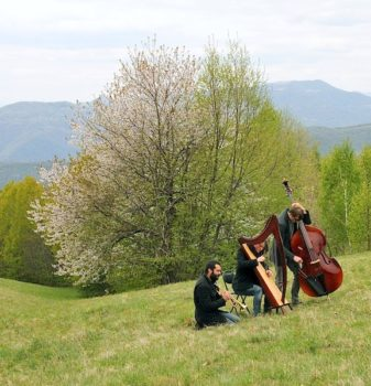 Tribil Trio